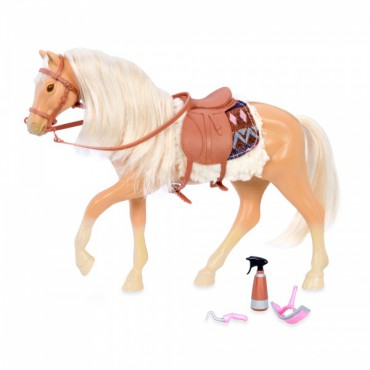 Koń American Quarter Horse...