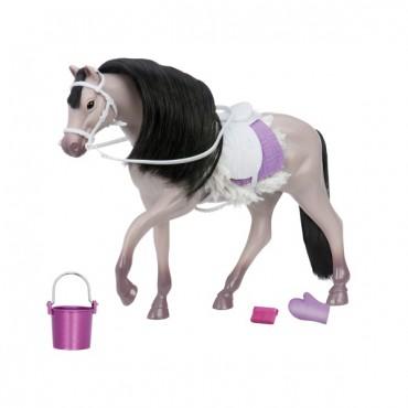 Koń Grey Andalusian Horse z...