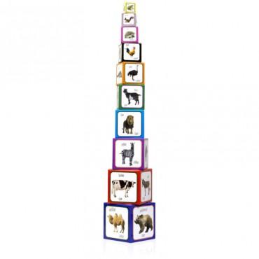 Piramida Zabaw - Zwierzęta